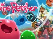 Hướng dẫn nhận miễn phí tựa game siêu vui nhộn Slime Rancher