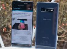 Đọ thời lượng pin giữa Exynos và Snapdragon trên Galaxy S10+: Chọn Exynos nếu bạn là con nghiện web