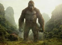"""Tìm hiểu về sức mạnh của Kong, """"kỳ phùng địch thủ"""" thực sự của Godzilla trong MonsterVerse"""