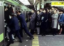 Từ lượm tử thi đến xin lỗi hộ, đây là những nghề nghiệp kỳ quặc chỉ có ở Nhật Bản