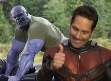 """Nhà văn Avengers: Endgame lý giải thuyết âm mưu Ant-Man """"chui hậu"""" để tiêu diệt Thanos: Người Kiến sẽ chết ngay lập tức!"""