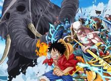 One Piece: Khổng Tượng có thể từng đến Skypiea và 5 thông tin mới xung quanh tộc Mink