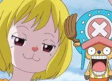 One Piece: Carrot, cô bé thỏ của tộc Mink có thể là kẻ phản bội và thuộc phe Tứ Hoàng Kaido?