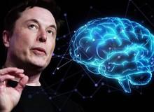 Elon Musk giới thiệu công nghệ hợp nhất não người với AI, phải chăng thời đại Detroit: Become Human sắp đến?