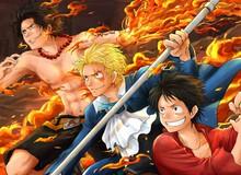 Ngoại trừ băng Mũ Rơm, đây là 5 nhân vật được yêu thích nhất One Piece