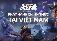 Vừa mới mở cửa, Auto Chess VN đã nhận được nhiều lời khen từ game thủ Việt