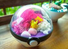 PokeCraft: Những trái Pokeball đẹp lung linh của nhóm bạn yêu Pokemon