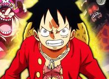 One Piece 954: Luffy vẫn miệt mài luyện tập mà không hay biết Kaido đã liên minh với Big Mom