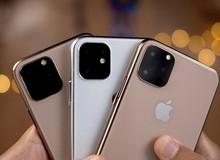 """iPhone 11 sẽ về Việt Nam rất sớm, nhưng không """"hot"""" như iPhone X"""