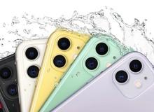 Người Việt thờ ơ với iPhone 11 giá rẻ, nhưng cả thế giới đều mong đợi hơn cả iPhone 11 Pro và 11 Pro Max