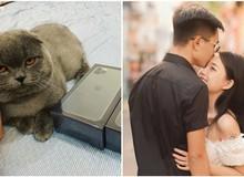 Linh Ngọc Đàm khoe được tặng iPhone 11 mới trình làng: Đúng là bạn trai nhà người ta chưa bao giờ làm chúng tôi thất vọng!