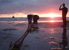 Cáp biển AAG được sửa xong sớm trước 4 ngày so với dự kiến