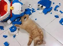"""Ghen tị vì chủ nhân cả tuần ngồi lắp mô hình Doraemon, mèo thật thẳng chân đạp đổ """"mèo máy"""" vỡ tan tành"""