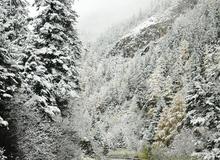 """Dân mạng """"sôi sục"""" vì tuyết rơi ở Sapa"""