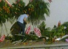 """Choáng với hành động """"hôi hoa"""" của người Sài Gòn tối 11/1"""