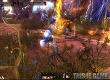 Gamer Việt kéo nhau chơi thử Elite Lord of Alliance