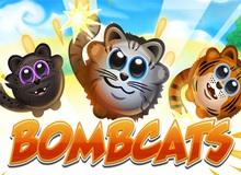 Bombcats- Game Casual trên mobile kén người chơi