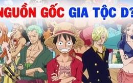 One Piece: Có lẽ Oda đã âm thầm tiết lộ về bí mật của gia tộc D. trong chap 996?
