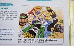 Lầy như nước Pháp, đem cả bộ truyện One Piece vào giảng dạy trong sách giáo khoa