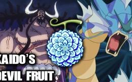 Giả thuyết One Piece: Giải mã bí ẩn xung quanh trái ác quỷ thần thoại của Kaido khiến hắn trở nên bất tử?