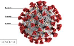 Game có thể giúp chống lại virus corona