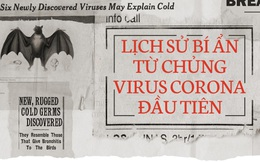 Lịch sử bí ẩn của họ virus corona: Từ cơn cảm lạnh thông thường đến những đại dịch toàn cầu