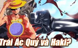 Câu hỏi muôn thủa trong One Piece: So sánh Trái Ác Quỷ với Haki, năng lực nào mạnh hơn?