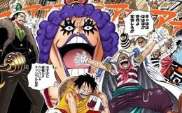 """One Piece: Ngoại trừ các thành viên băng Mũ Rơm, đây là 8 nhân vật có vinh dự được """"não cao su"""" Luffy nhớ tên"""