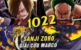 Soi những chi tiết thú vị trong One Piece chap 1022: Orochi còn sống, đôi cánh của Vua Hải Tặc xuất hiện? (P.2)