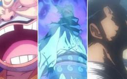 One Piece: 7 thành viên gia tộc Shimotsuki đã được tiết lộ, hầu hết đều có mối liên quan đến Zoro