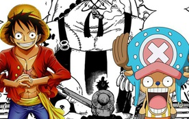 One Piece: Để đối phó với đạn