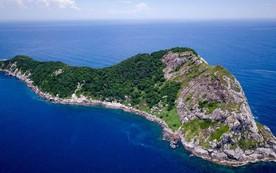 Hòn đảo nguy hiểm nhất thế giới: Quê nhà của hơn 400 nghìn con rắn, lỡ đặt chân vào xem như không có đường ra