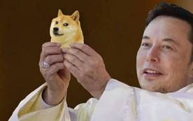 Elon Musk hé lộ lý do thực sự của việc ủng hộ Dogecoin, hóa ra nó 'nhân văn' hơn bạn nghĩ