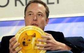 Elon Musk đăng 1 bức biếm họa, tiền ảo Dogecoin tăng 248% chỉ sau 1 ngày