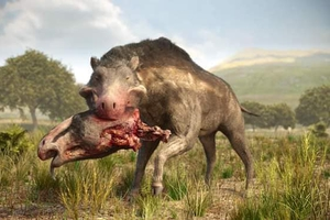 Rùng rợn truyền thuyết về 'Lợn địa ngục', quái vật có thực từng xuất hiện tại Bắc Mỹ
