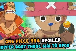 Spoiler đầy đủ One Piece chương 994, đáng buồn tuần sau truyện nghỉ