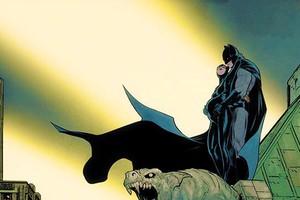 Tin sốc: Catwoman lộ loạt ảnh có thai với... Batman?