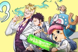 One Piece: 6 trái ác quỷ có năng lực kéo dài sự sống, trái số 2 còn mang lại sự