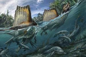 Top 5 điều thú vị xoay quanh Spinosaurus - kẻ săn mồi đáng sợ ngang cơ cả T-REX