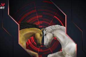 Oly Sport, tựa game NFT Esports đầu tiên trên thế giới dành cho những chú ngựa: Từ phối giống, chăm bẵm cho tới cuộc đua trở thành