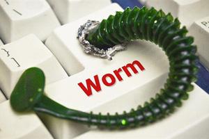Worm là gì? Tại sao chúng lại nguy hiểm với máy tính?