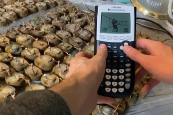 Xuất hiện thanh niên dùng 770 miếng khoai tây bị mốc để… chiến Doom