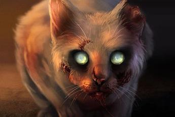 Quỷ miêu: Loại tà thuật đầy ám ảnh dựa trên loài mèo