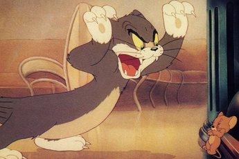 """Tất tần tật về bộ đôi """"không đội trời chung"""" Tom và Jerry"""