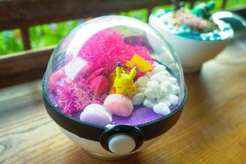 PokeCraft: Những trái Pokeball đẹp lung linh của nhóm bạn trẻ Việt yêu Pokemon
