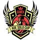 GameK AoE Solo Cup